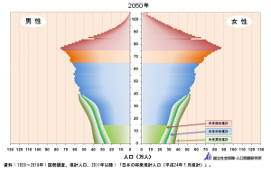 2050人口ピラミッド